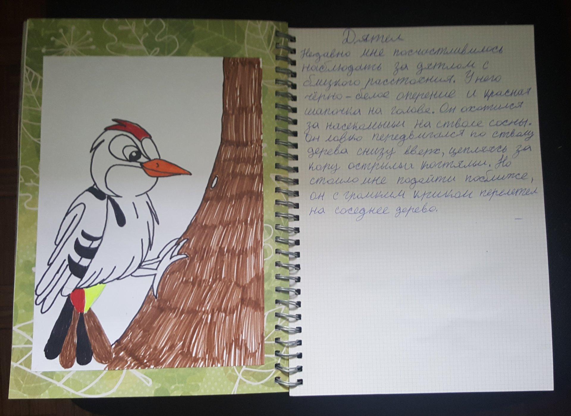 помощи поздравительные открытки заповеднику белогорье передачи